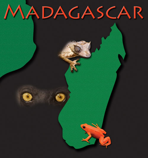 52_MadagascarTitle.jpg