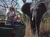 53_02_ElephantPhotographer.jpg