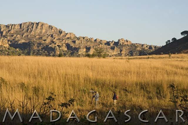 53_MadagascarHeader.jpg