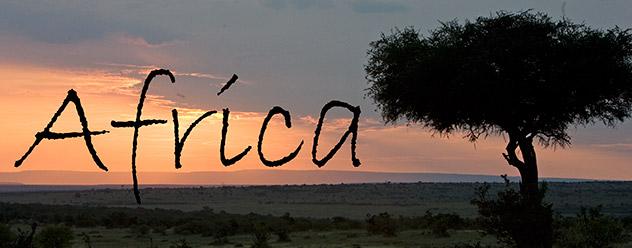 54_AfricaHeader.jpg