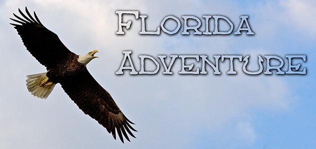 57_Florida-Header.jpg