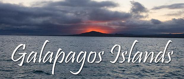 59_Galapagos-Header.jpg