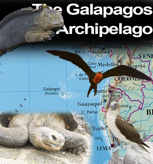61_Galapagos Header.jpg