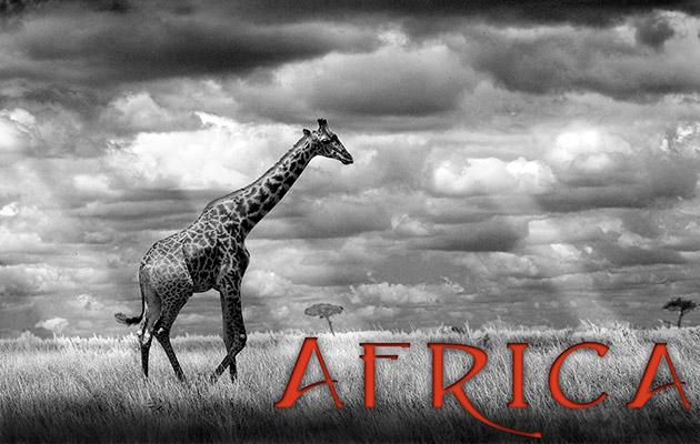 63_Africa-Header.jpg
