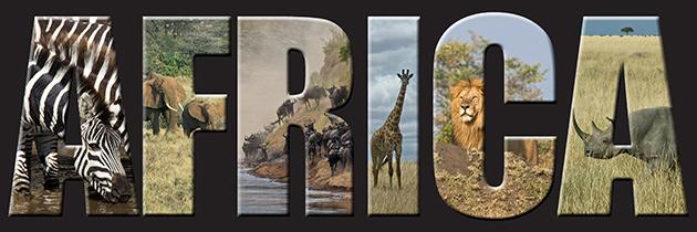 64_AfricaHeader.jpg