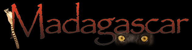 64_MadagascarHeader.jpg