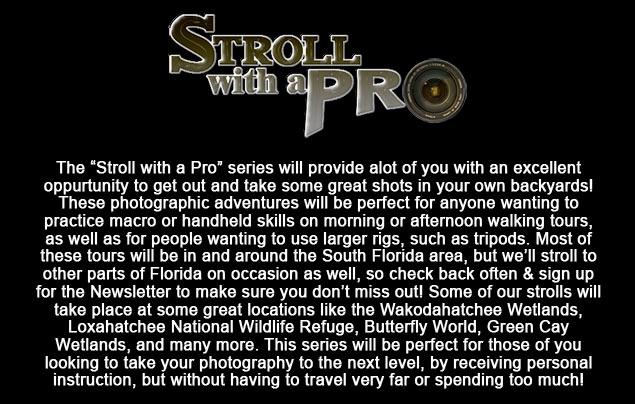 66_FloridaTourPage6.jpg