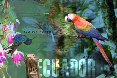 Ecuador-title-slide.jpg