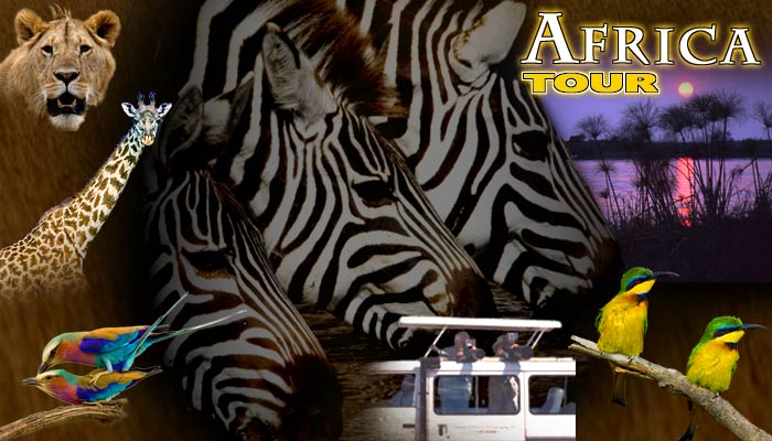 Africa Photography Tour Safari