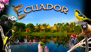 Photo Tours Ecuador
