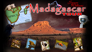 Madagascar Photo Workshop