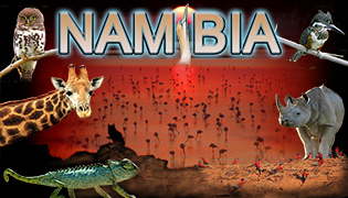 Namibia Photography Tours